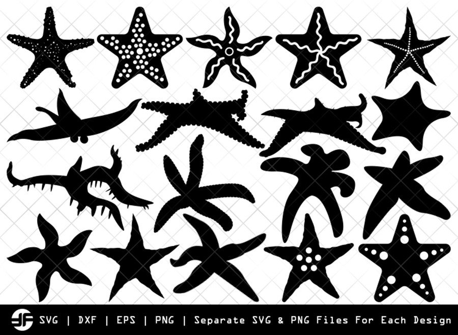 Starfish SVG | Sea Fish SVG | Silhouette Bundle | Cut File