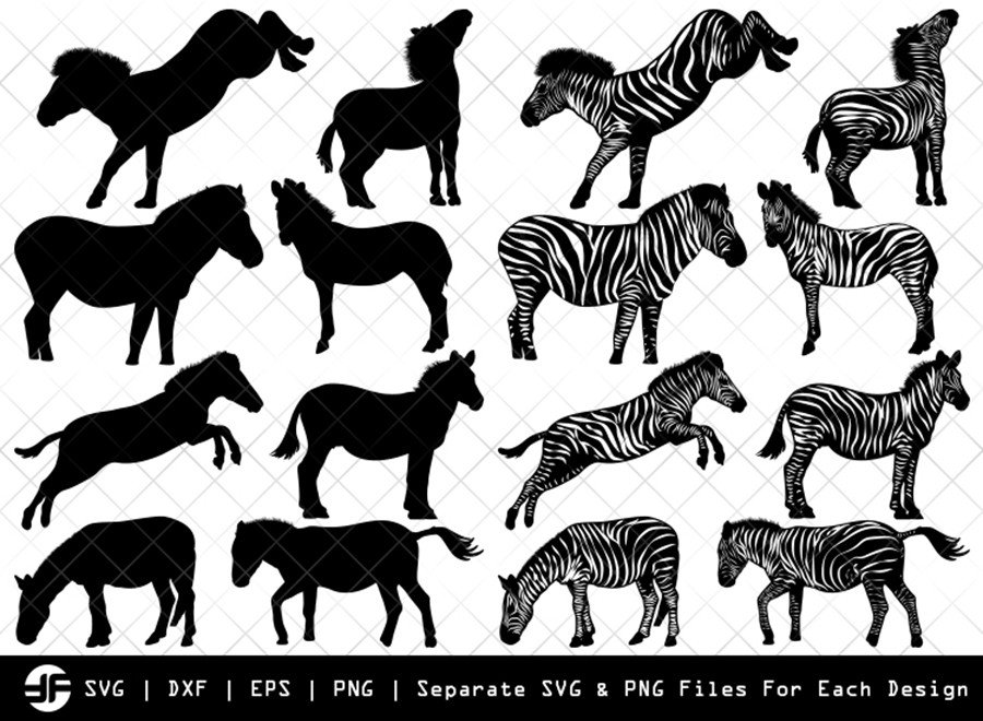 Zebra SVG | Animal SVG | Silhouette Bundle | SVG Cut File