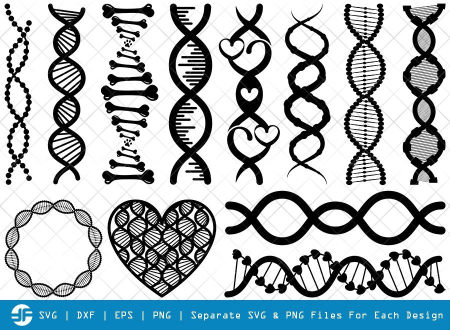 DNA SVG Cut Files | DNA Strand Silhouette Bundle