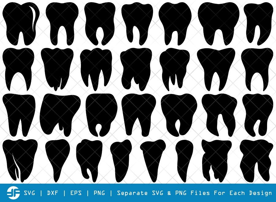 Tooth SVG Cut Files | Dentist Tooth Silhouette Bundle