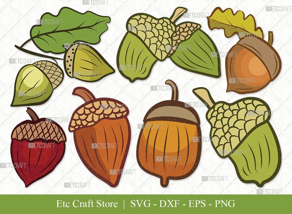 Acorn Clipart SVG Cut File | Fall Svg