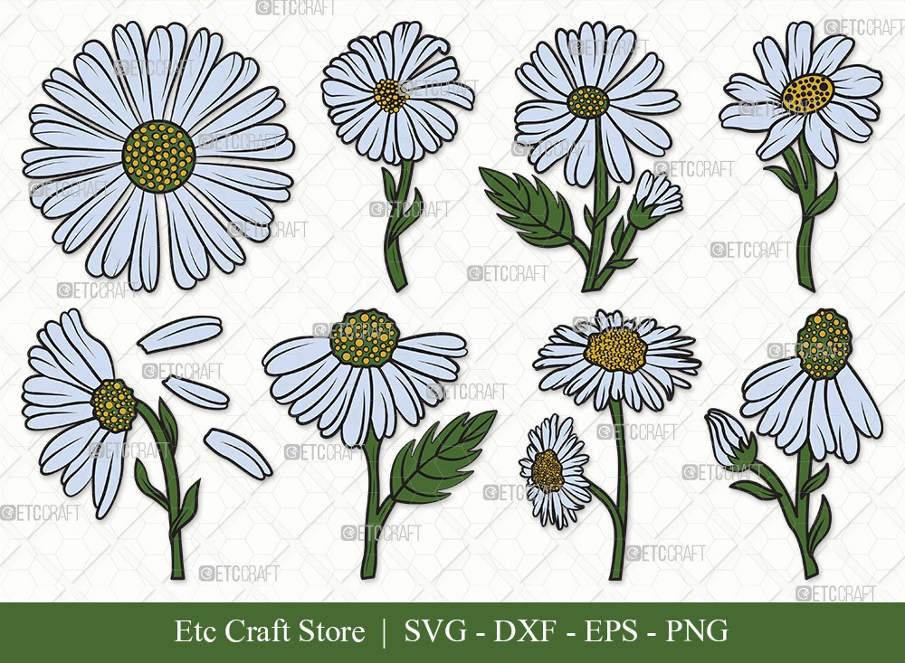 Daisy Flower Clipart SVG | Daisy Flower Svg