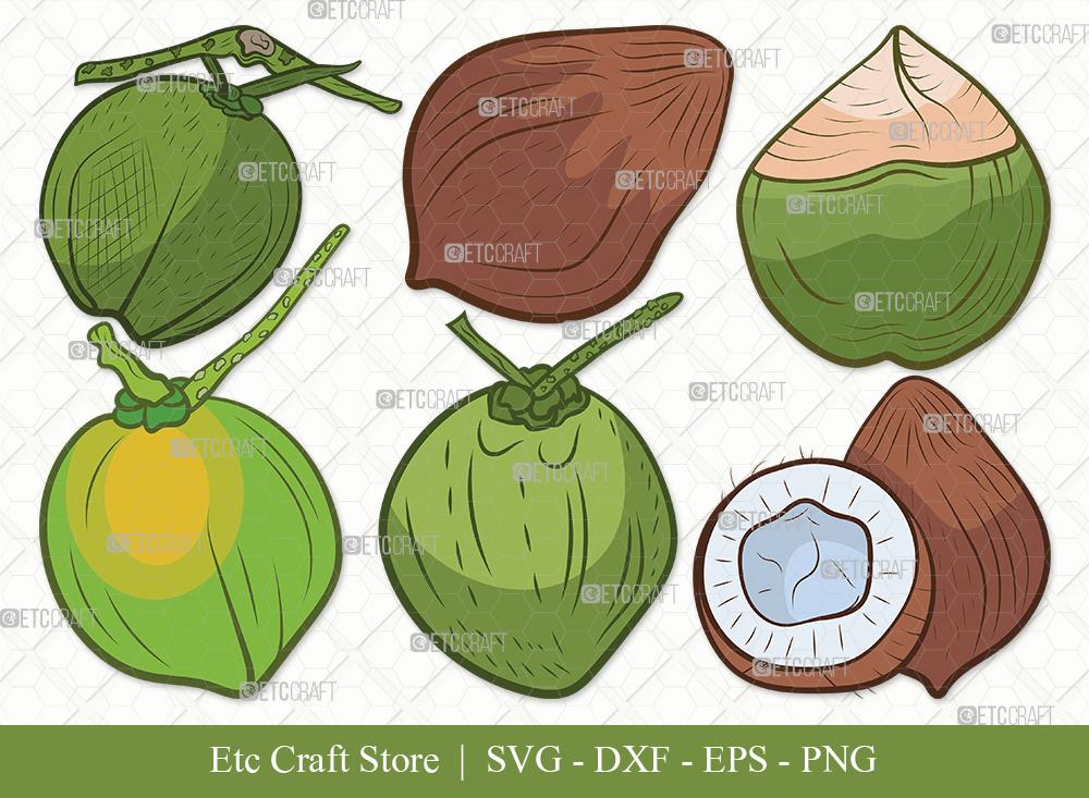 Coconut Clipart SVG Cut File | Fruit Svg