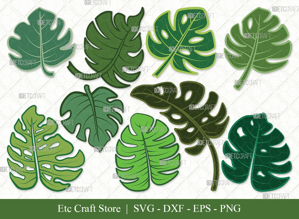 Monstera Leaf Clipart SVG | Monstera Leaves SVG