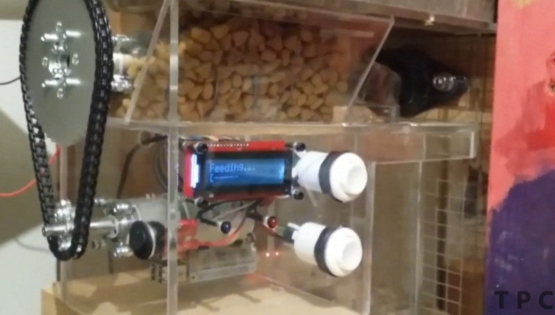 Automatic Pet Feeder using Raspberry pi