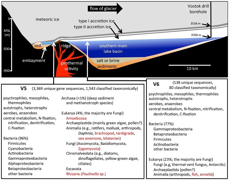 lake_vostok_study_diagram