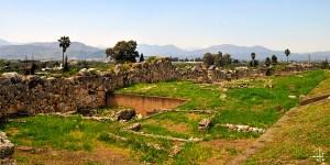 Tiryns Eternal Greece Ltd