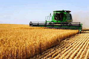 Long-term outlook for corn, soybean and wheat ETFs strong, as grain demand surges