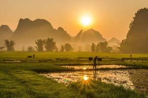 Vietnam equities