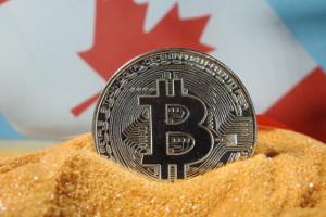 bitcoin tsx)