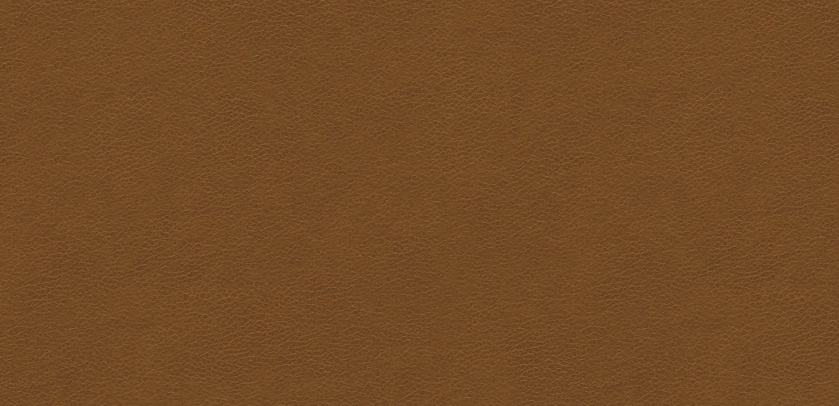 Omni Light Brown Leather Swatch  Ethan Allen  Ethan Allen