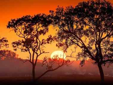 Sunrise over fields - Darwin day tours - Fogg Dam by ethical adventures