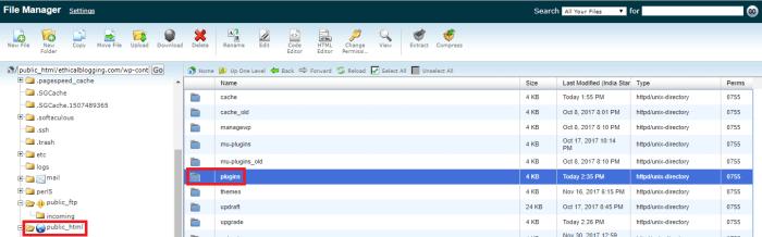 Installing a WordPress Plugin Manually (Using cPanel) - 1