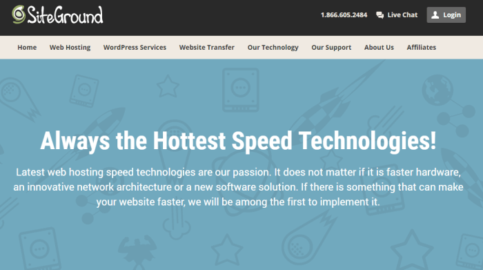 SiteGround Hosting Service Review Speed Screenshot