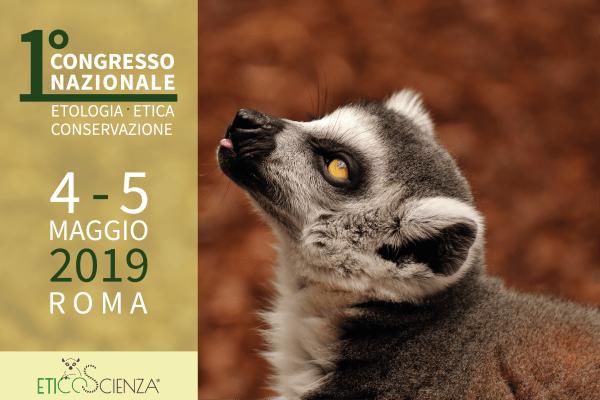 1° CONGRESSO EEC 2019: LOCANDINA DELL'EVENTO