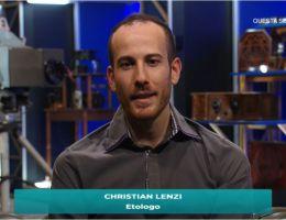 christian lenzi