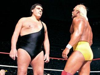 Hulk Hogan WWE