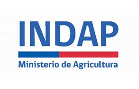 indap-2