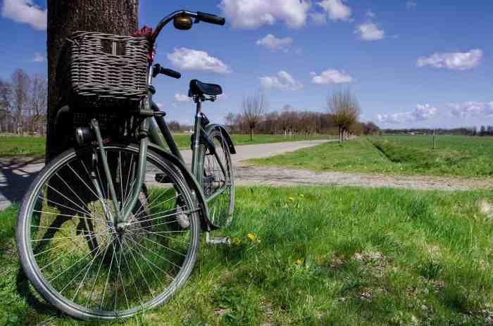 Séjourner en Loire-Atlantique - se déplacer