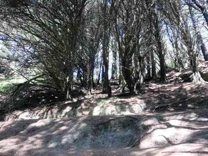 Mont Victoria, Nouvelle-Zélande, Lieux tournage Seigneur des Anneaux 2016 ©Etpourtantelletourne.fr