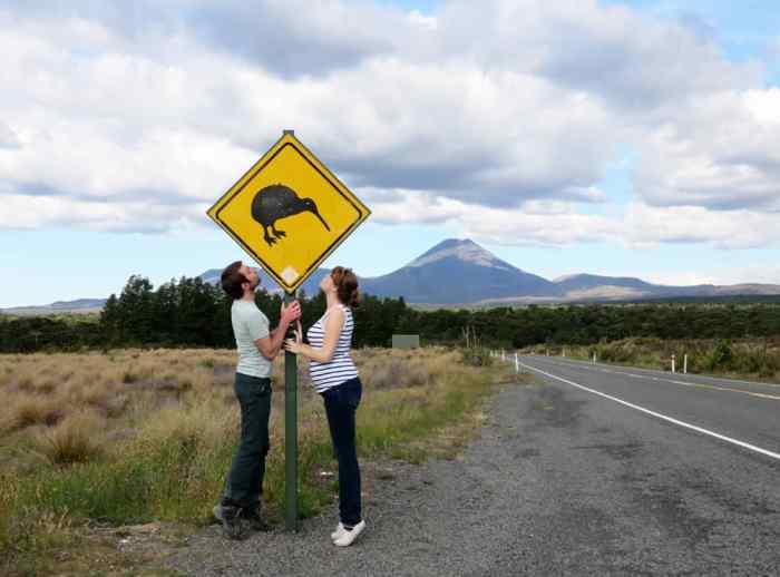Nouvelle Zélande Tongariro National Park, panneau kiwi 2016 ©Etpourtantelletourne.fr