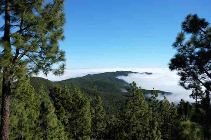 Tenerife Route des crêtes 2017 ©Etpourtantelletourne.fr