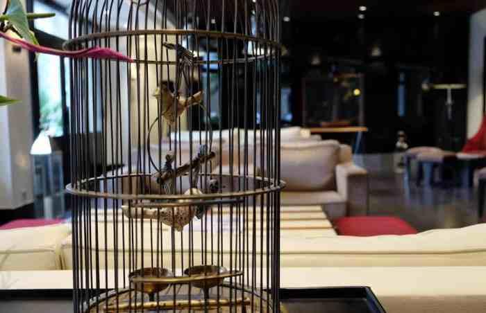 Saint-Malo hotel le nouveau monde 2017 ©Etpourtantelletourne.fr