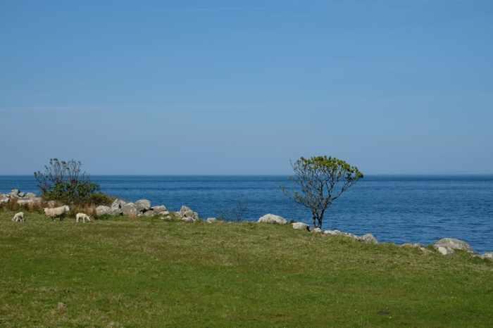 Itinéraire sur les lieux de tournage de Game of Thrones en Irlande du Nord - Murlough Bay ©Etpourtantelletourne.fr