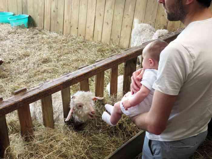 Voyager avec un bébé de 0 à 12 mois : conseils et retour d'expérience ©Etpourtantelletourne.fr