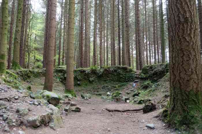 Lieux de tournage saison 8 de Game of Thrones en Irlande du Nord - Tollymore forest Park ©Etpourtantelletourne.fr