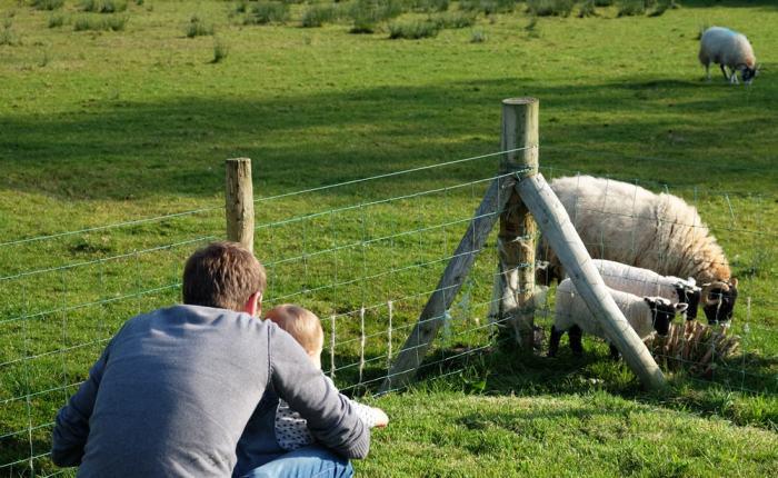 hebergement à la ferme Irlande du Nord ©Etpourtantelletourne.fr