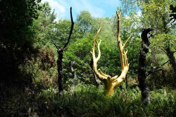 L'arbre d'or Val sans retour Brocéliande ©Etpourtantelletourne.fr