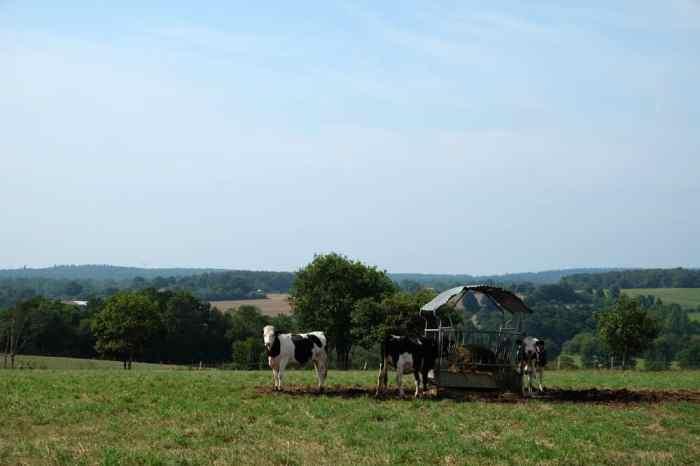 Paysage de campagne bretonne  ©Etpourtantelletourne.fr