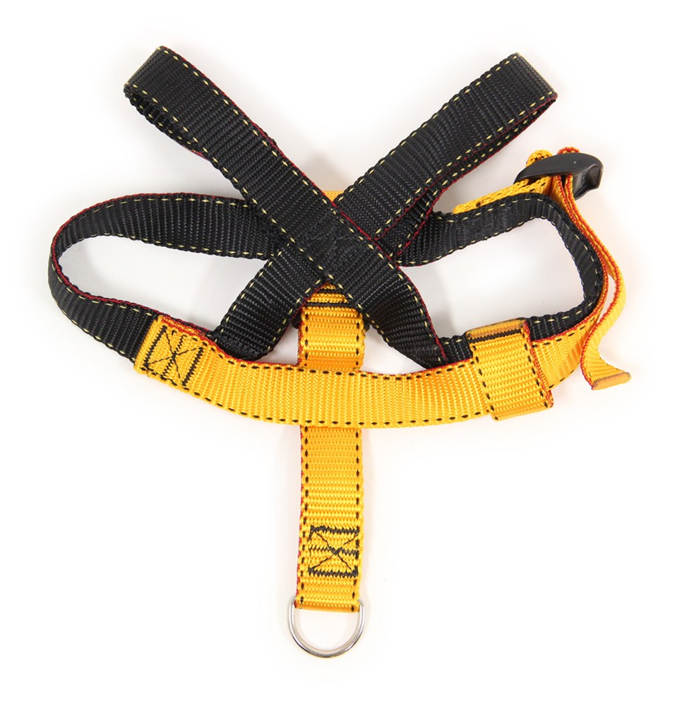 Ruff Rider Roapet Harness And Vehicle Restraint System