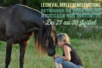 constellation familiale - communication intuitive avec les chevaux - marc perugini - être soi