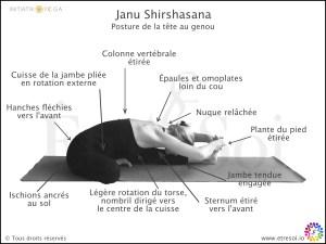 posture yoga - Janu shirshasana - indications en francais - Être Soi