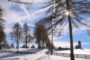 langfenn sul salto nel paesaggio invernale