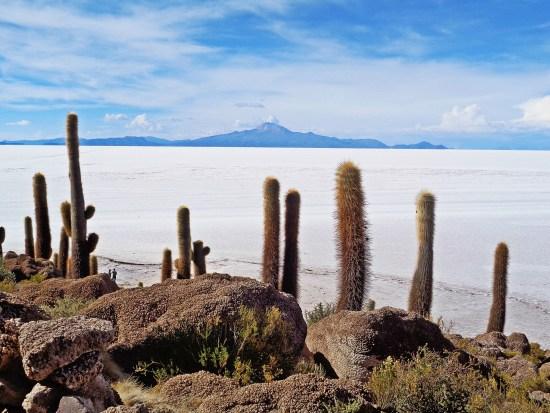 Bolivie  Itinéraire dans la mesure du possible 2f2c93d8c26