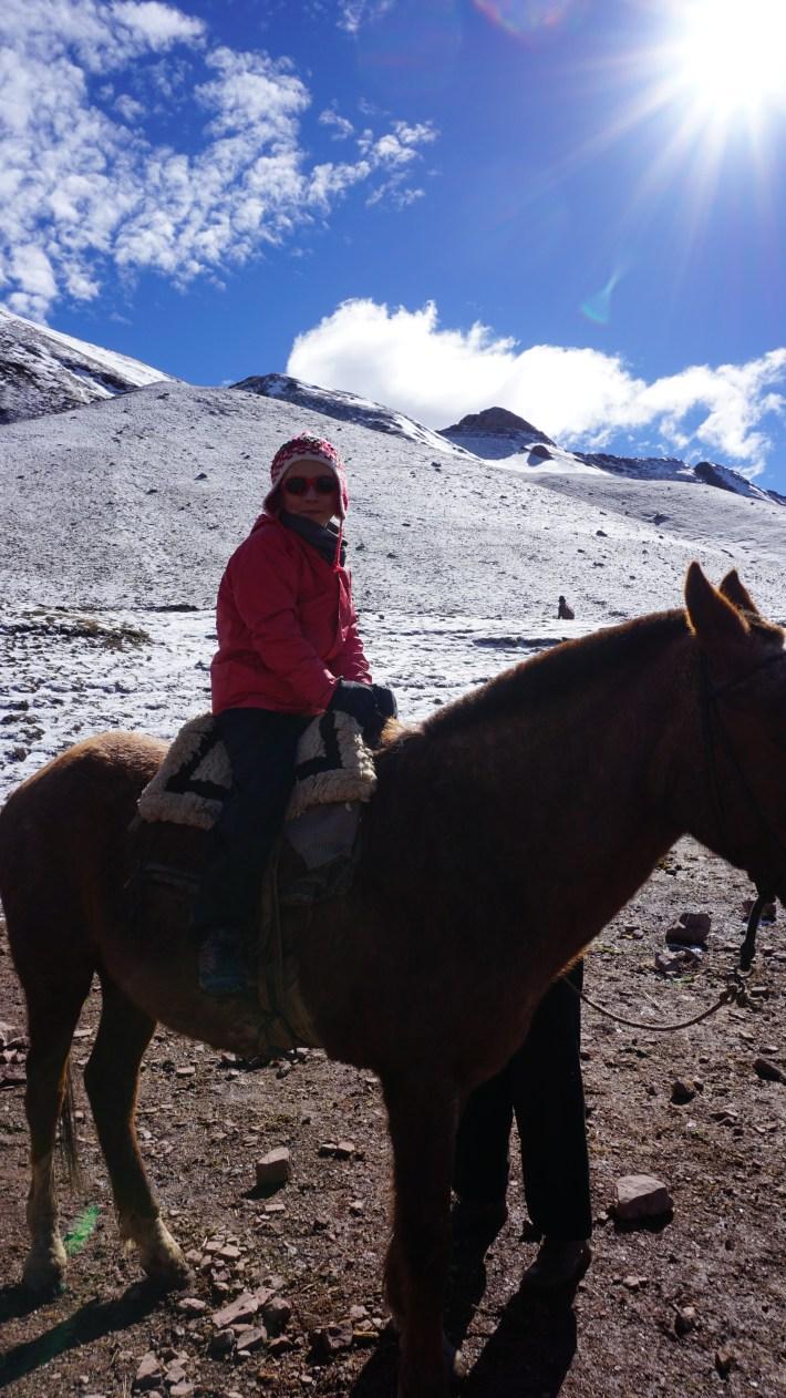 Vinicunca, Machu Picchu et haut là là - Un cheval