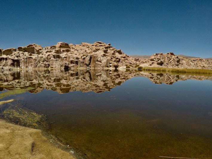 Sucre, Salar et Sud Lipez - Laguna de Las Aves