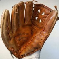 leather mitt