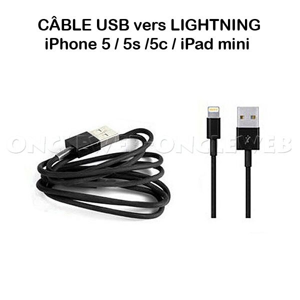 Câble USB lightning iPhone ipad mini couleur