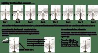 The Hanukkah Menorah and Hanukkah Blessings