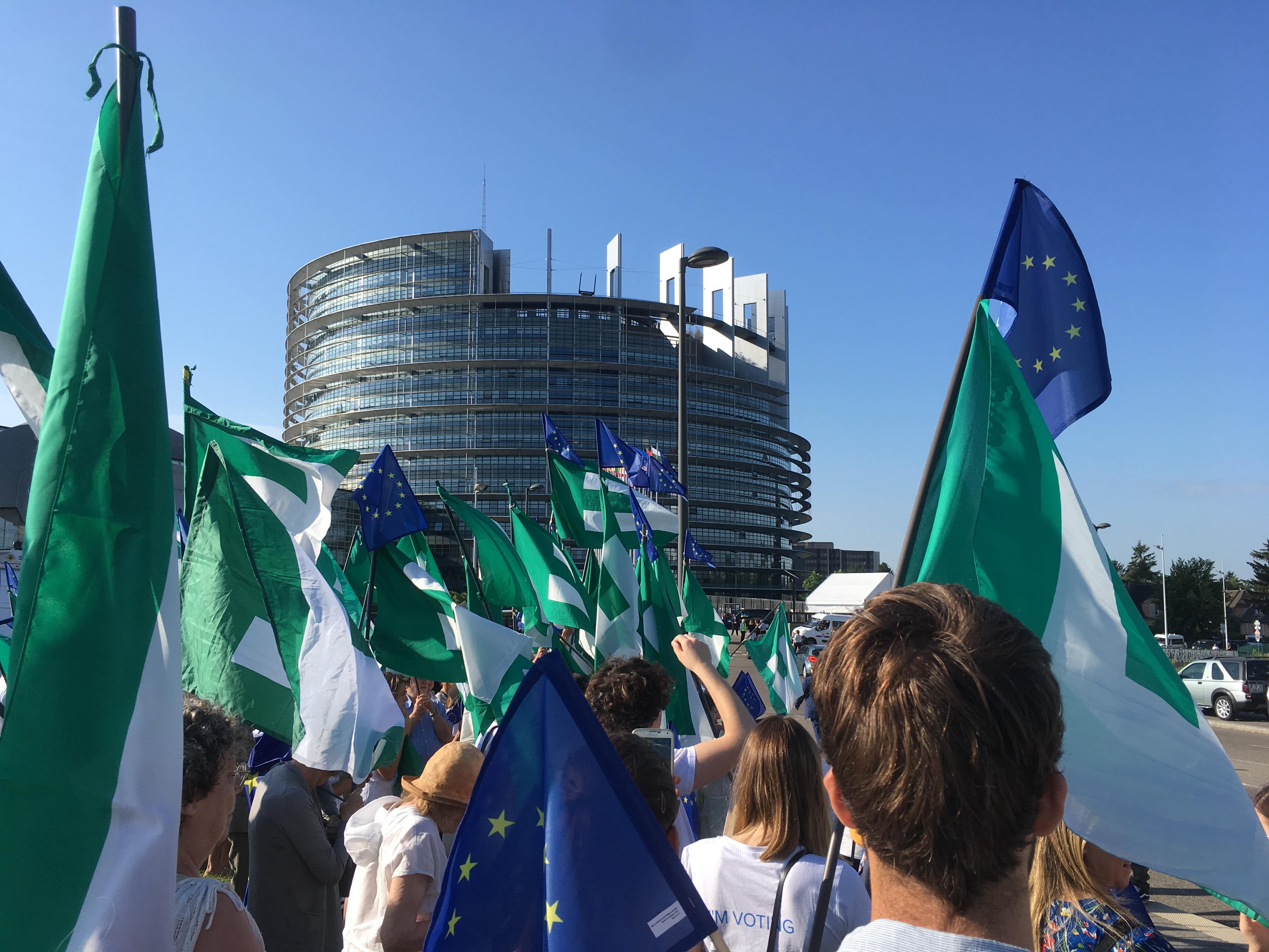 La préparation de l'investiture du nouveau Parlement européen par les fédéralistes