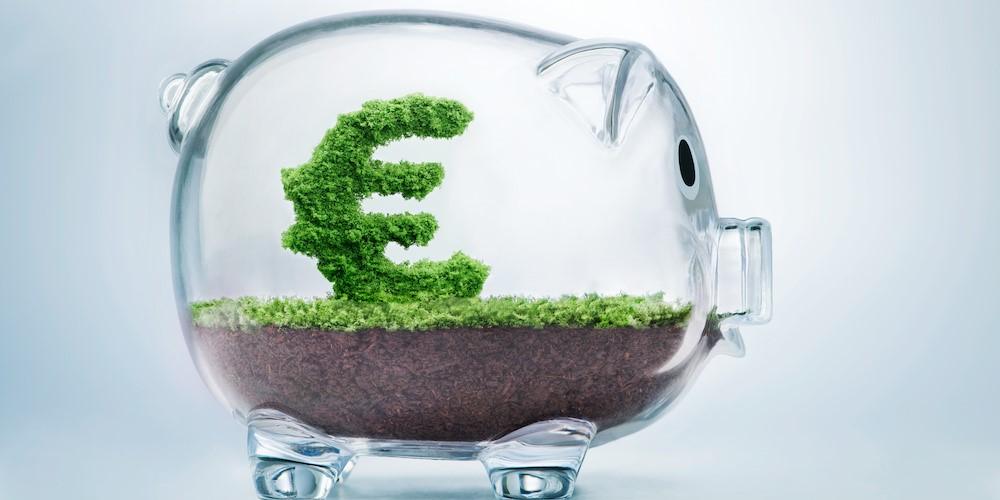 Greening the ECB's Monetary Policy