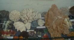 Muzeul Mineralogic Constantin Gruescu- (10)