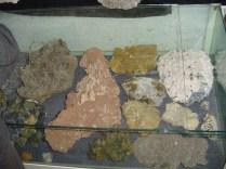 Muzeul Mineralogic Constantin Gruescu- (16)