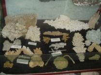 Muzeul Mineralogic Constantin Gruescu- (6)