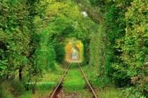 Tunelul ibirii din CS-3