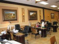 Nail Salon Design Gallery